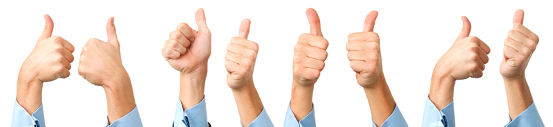 Thumbs up for Web Success Team